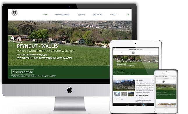 Pfyngut Wallis - Responisver Webauftritt